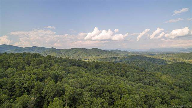 71 Yellowwood Lane #124, Horse Shoe, NC 28742 (#3522464) :: Carlyle Properties