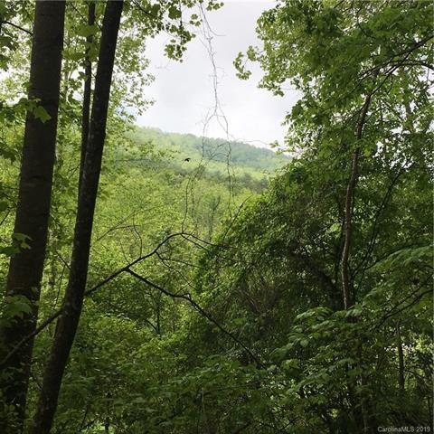 0000 Statesville Ridge, Wilkesboro, NC 28659 (#3522805) :: Homes Charlotte
