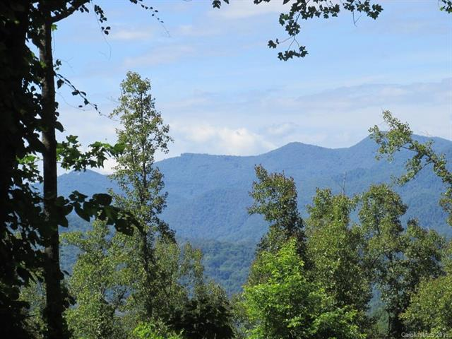 00 Watson Branch Road, Cullowhee, NC 28723 (#3523252) :: Stephen Cooley Real Estate Group