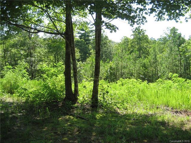 7 Woods Laurel Lane #07, Mill Spring, NC 28756 (#3523379) :: Charlotte Home Experts