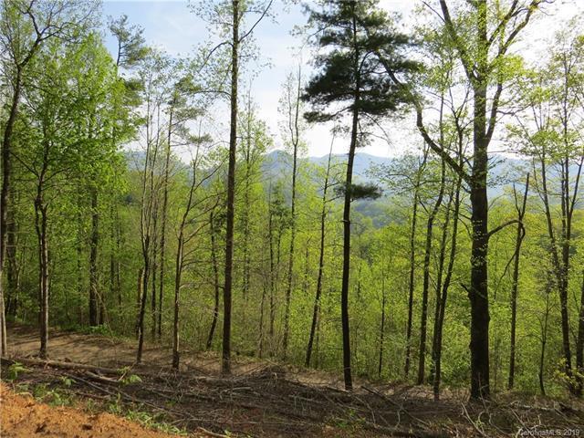 000 Bolens Creek Road, Burnsville, NC 28714 (#3523591) :: Rinehart Realty