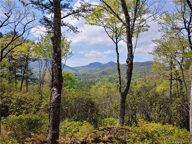 0 Hawk Mountain Road Hm33, Lake Toxaway, NC 28747 (#3525940) :: BluAxis Realty