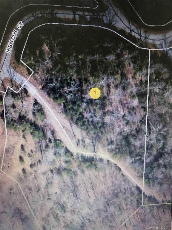 4 Hibiscus Court #4, Lake Lure, NC 28746 (#3526021) :: Rinehart Realty