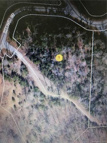 4 Hibiscus Court #4, Lake Lure, NC 28746 (#3526021) :: Keller Williams Professionals