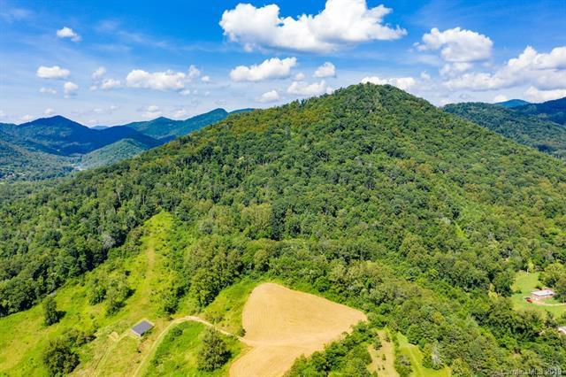 99999 Ox Creek Road, Weaverville, NC 28787 (#3526256) :: Stephen Cooley Real Estate Group