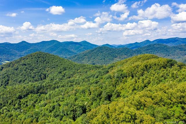 99999 Mundy Cove Road, Weaverville, NC 28787 (#3526271) :: Stephen Cooley Real Estate Group