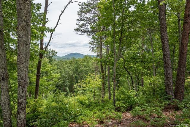 0002 Lure Ridge Drive #2, Lake Lure, NC 28746 (#3526415) :: Miller Realty Group
