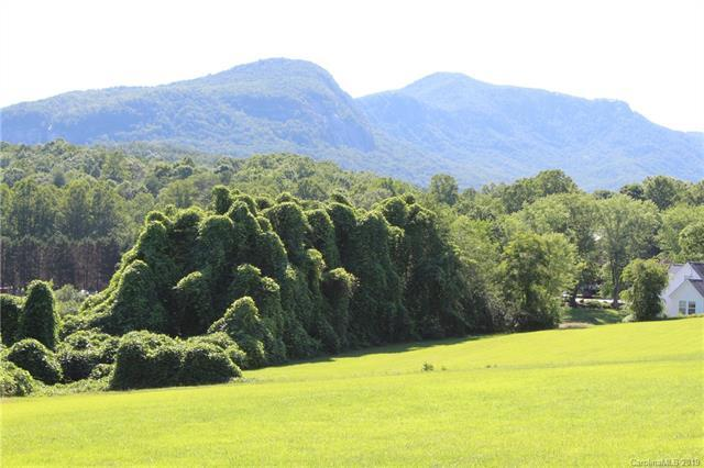 4.52 acres Buffalo Creek Road, Lake Lure, NC 28746 (#3526662) :: Keller Williams Professionals