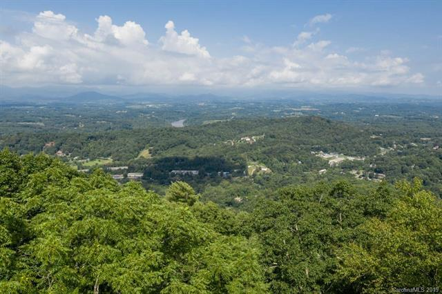 106 Summit Tower Circle, Asheville, NC 28804 (#3526739) :: Keller Williams Professionals
