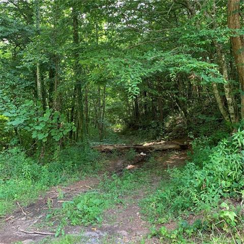 0 Little Savannah Road, Cullowhee, NC 28723 (#3526976) :: Stephen Cooley Real Estate Group