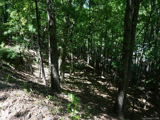 Lot 51 Fairway Drive, Lake Lure, NC 28746 (#3527140) :: Carlyle Properties
