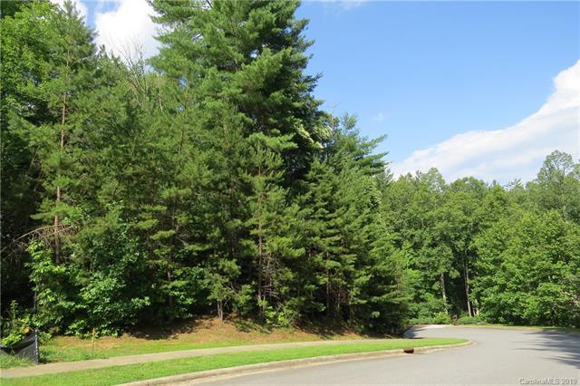 M135 Camptown Road M135, Brevard, NC 28712 (#3527364) :: Besecker Homes Team