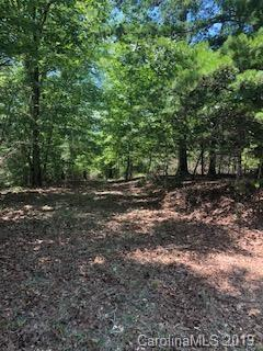Lot 51 Canoe Drive #51, Mill Spring, NC 28756 (#3527425) :: Francis Real Estate