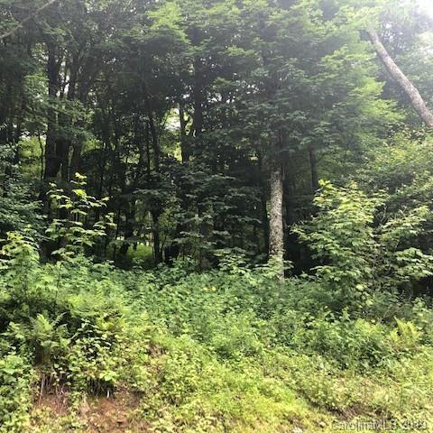 5 Trillium Lane, Mars Hill, NC 28754 (#3527459) :: Mossy Oak Properties Land and Luxury