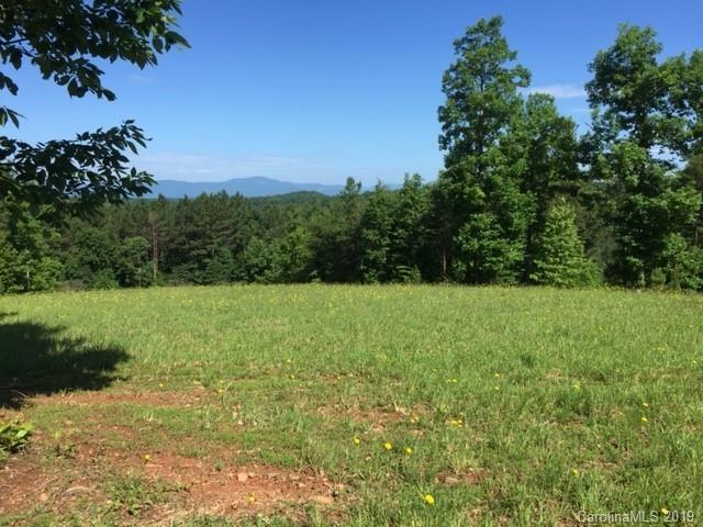 0 Polk County Line Road #6, Rutherfordton, NC 28139 (#3527615) :: Stephen Cooley Real Estate Group