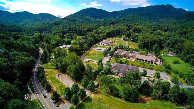 14 Jane Jacobs Road, Black Mountain, NC 28711 (#3527889) :: The Premier Team at RE/MAX Executive Realty