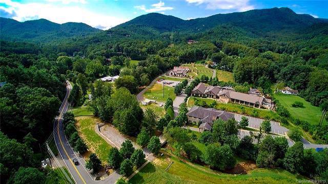 14 Jane Jacobs Road, Black Mountain, NC 28711 (#3527889) :: LePage Johnson Realty Group, LLC