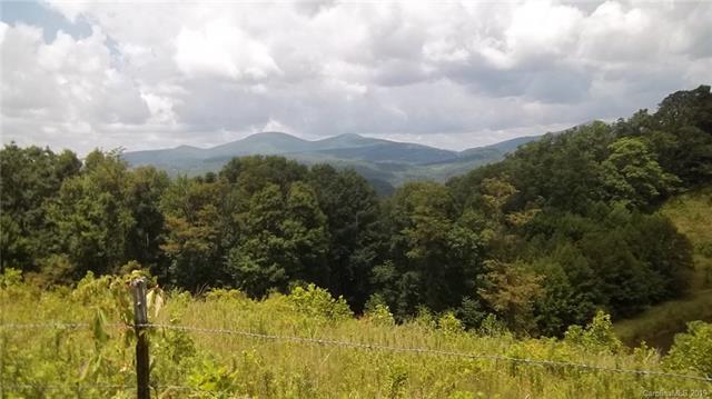 000 Firemender Valley Trail #6, Hendersonville, NC 28792 (#3527901) :: Homes Charlotte