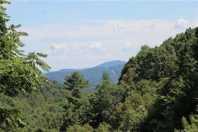 99999 Spring Creek Trail #13, Asheville, NC 28806 (#3527932) :: Stephen Cooley Real Estate Group