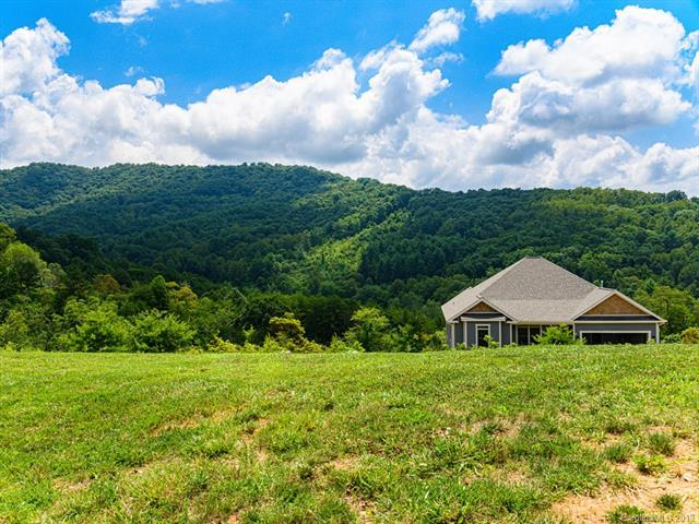 24 Endless View Drive, Weaverville, NC 28787 (#3528588) :: Stephen Cooley Real Estate Group