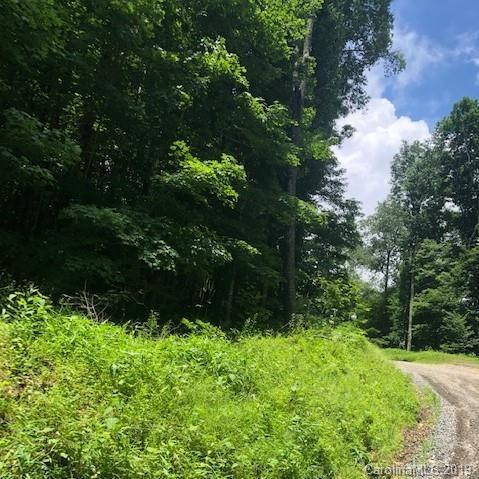 90 Flame Azalea Lane, Mars Hill, NC 28754 (#3529000) :: Mossy Oak Properties Land and Luxury