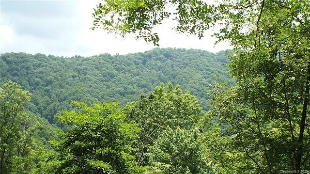 000 N Timberline Drive Tr D, E, Whittier, NC 28789 (#3529269) :: Mossy Oak Properties Land and Luxury