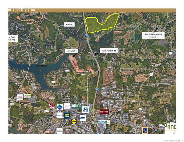 000 Parkertown Road, Mooresville, NC 28117 (#3529357) :: LePage Johnson Realty Group, LLC