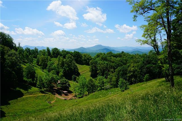1472, 1464 Brummetts Creek Road, Green Mountain, NC 28740 (#3529571) :: Rowena Patton's All-Star Powerhouse
