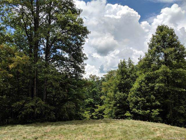 Lot T-3 18 Kalmia Lane T-3, Black Mountain, NC 28711 (#3529761) :: Keller Williams Professionals