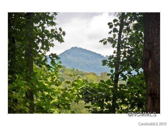 89 Pine Tree Drive, Candler, NC 28715 (#3530840) :: Exit Realty Vistas