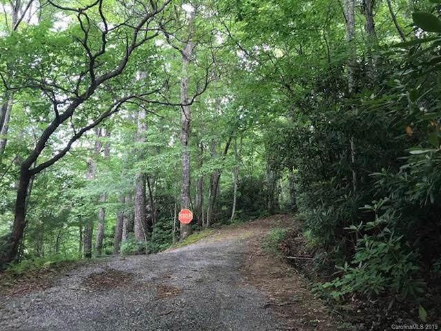 00000 Viking Trail, Hendersonville, NC 28739 (#3530847) :: Carlyle Properties
