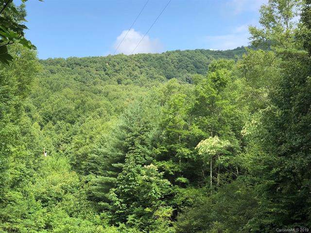 00 Blue Ridge Parkway, Spruce Pine, NC 28777 (#3530985) :: High Performance Real Estate Advisors