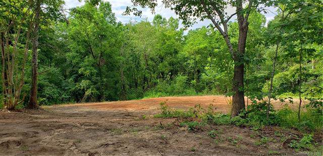 233 Medford Road, Tryon, NC 28782 (#3531028) :: Caulder Realty and Land Co.