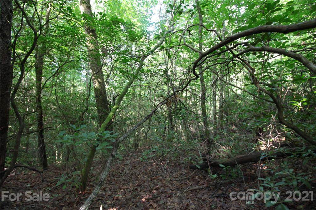 Lot 19 Gastons Bee Gum Road #19, Brevard, NC 28712 (#3531064) :: Cloninger Properties