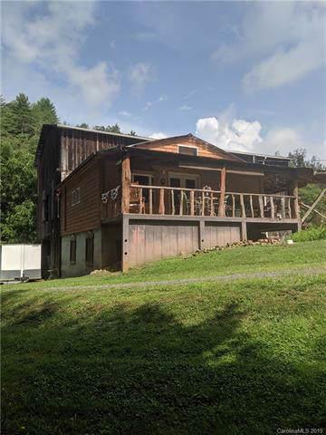 1668 Big Laurel Road, Marshall, NC 28753 (#3531100) :: Washburn Real Estate