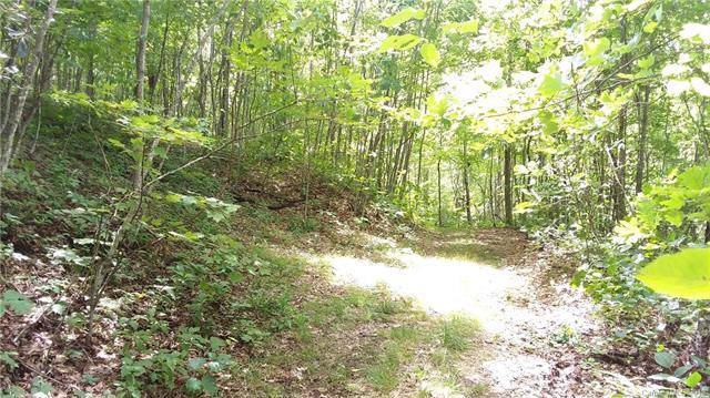 000 Caperton Point Road #14, Swannanoa, NC 28778 (#3531313) :: Miller Realty Group