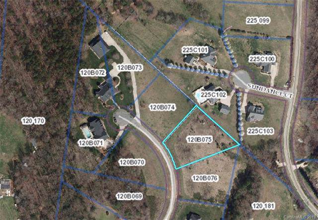 394 Fisher Farm Court, China Grove, NC 28023 (#3531512) :: Odell Realty