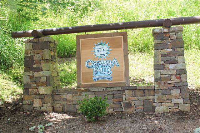 ## Catawba Falls Trail #79, Black Mountain, NC 28762 (#3532025) :: Rowena Patton's All-Star Powerhouse