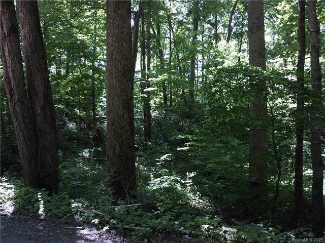 31 Bulldog Drive #8, Maggie Valley, NC 28751 (#3532538) :: Robert Greene Real Estate, Inc.