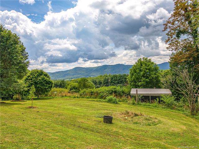 1237 Thompson Cove Road, Clyde, NC 28721 (#3532795) :: Francis Real Estate