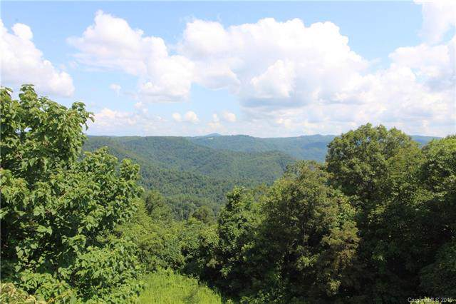 15924 Highway 16 Highway, Millers Creek, NC 28651 (#3533629) :: MOVE Asheville Realty