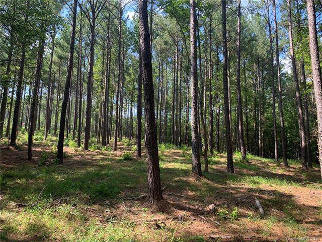 6005 Chimney Bluff Road #12, Lancaster, SC 29720 (#3533710) :: Roby Realty