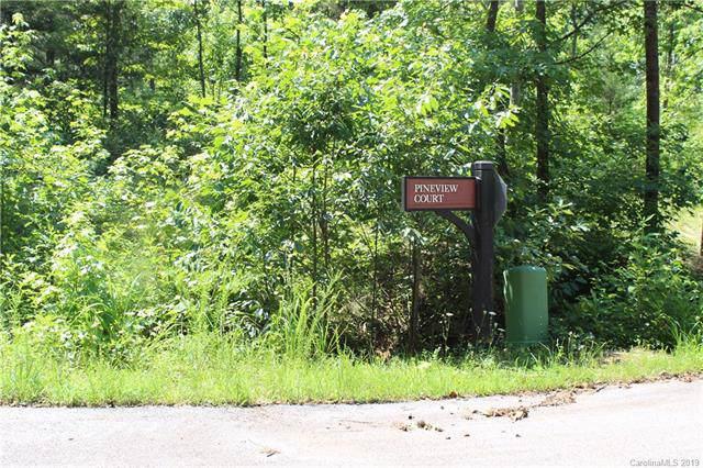000 Renard Road #10, Tryon, NC 28722 (#3534765) :: Robert Greene Real Estate, Inc.