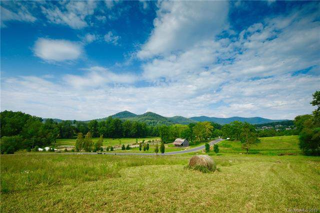 34 Walnut Valley Parkway #3, Arden, NC 28704 (#3535457) :: MartinGroup Properties