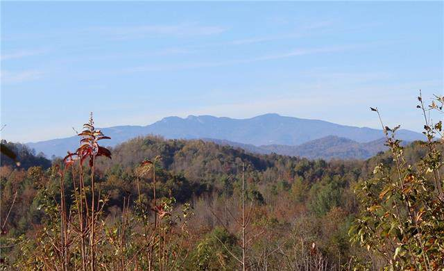 Lot 958A Low Valley Way, Lenoir, NC 28645 (#3535648) :: Besecker Homes Team