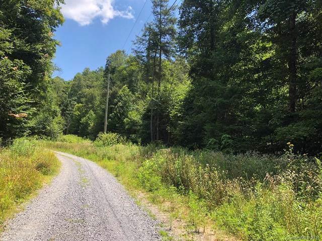 00 Poplar Creek Road, Bakersville, NC 28705 (#3535793) :: Charlotte Home Experts