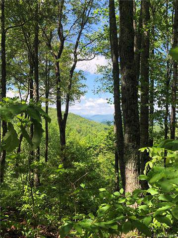 66 Spar Tree Way #66, Sylva, NC 28779 (#3536183) :: Rinehart Realty