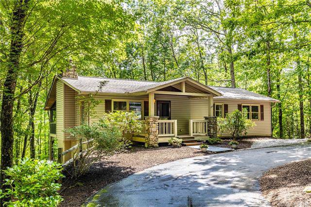 164 Waldsi Court, Brevard, NC 28712 (#3536491) :: Washburn Real Estate