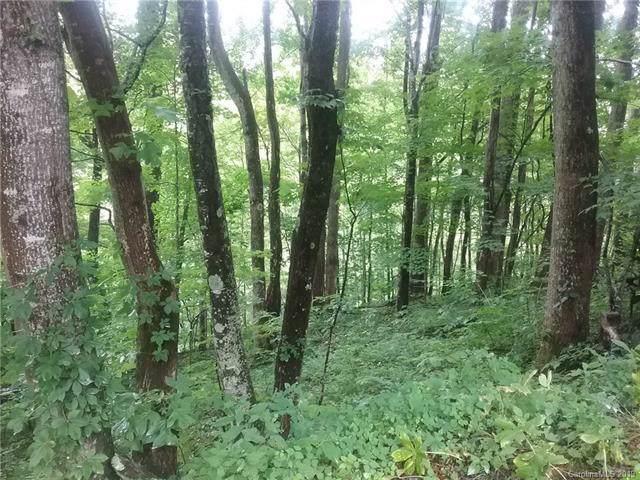 000 Granny Shepherd Road 5/Section 9, Mars Hill, NC 28754 (#3536832) :: Keller Williams Professionals