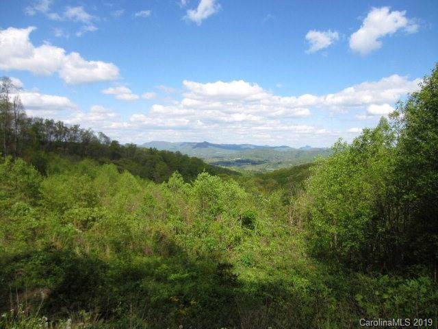 000 Zurich Road, Spruce Pine, NC 28777 (#3536921) :: Charlotte Home Experts